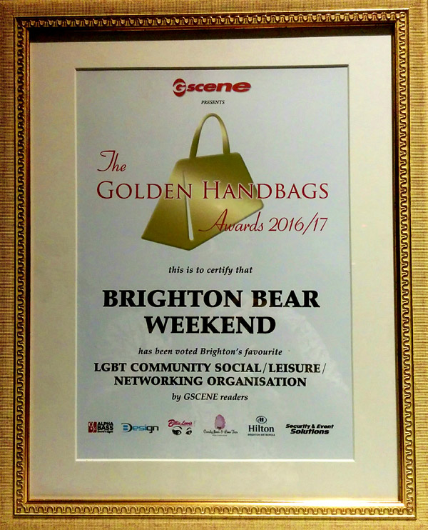 Our Golden Handbags 2017 award