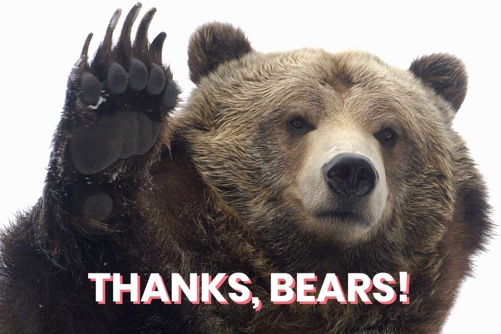 Thanks, bears!